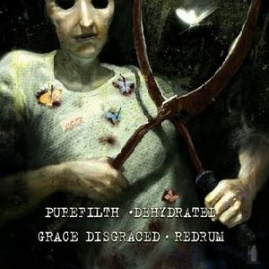 Purefilth / Dehydrated / Grace Disgraced / Redrum - Split